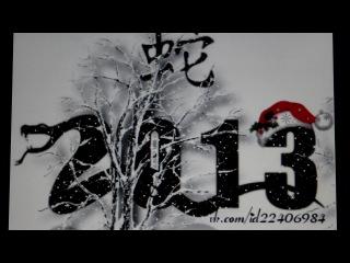С Наступающим Новым 2013 годом – годом Черной Водяной ЗМЕИ (по китайскому календарю)!!!
